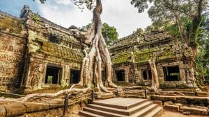 Ta Prohm, Siem Reap, Cambodia is included in Cambodia tours offered by Asia Vacation Group.