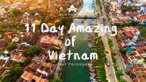 Product Intro Video Poster 11 Day Amazing of Vietnam