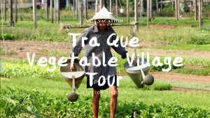 Video poster for intro video of Tra Que Village Tour